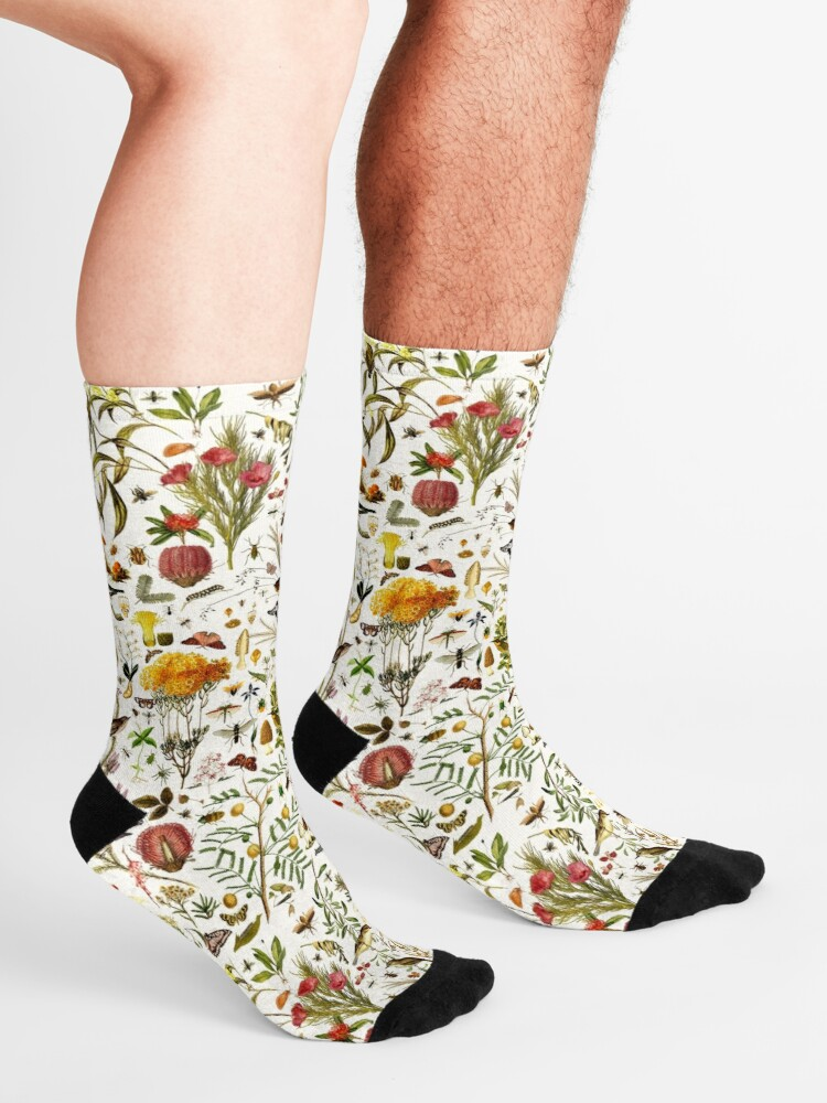 Alternate view of Biology Australia. Socks