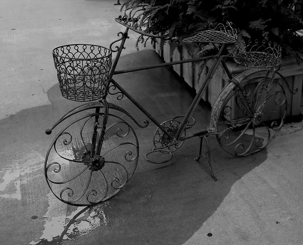 Bicycle Planter by Karen Harrison