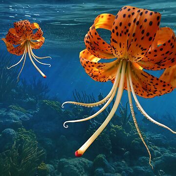 Octo-Flower Jelly-Pus by lizard911