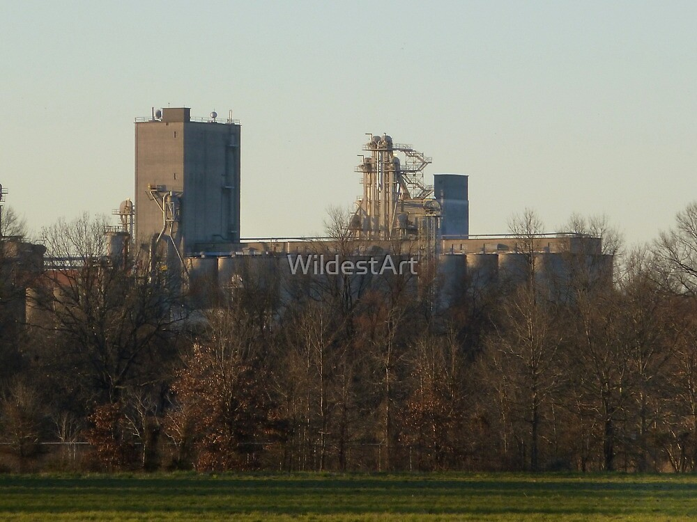 Mill In The Fall by WildestArt