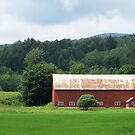 Red Barn in the Meadow by Sandra Fortier