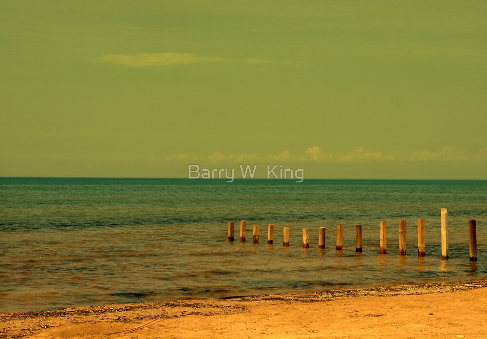 I'm In A Beachy Mood by Barry W  King