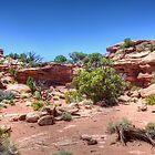 Rock Garden on the Island in the Sky by Bill Wetmore