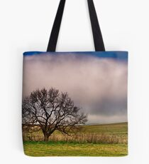 """""""Rolling In"""" Tote Bag"""