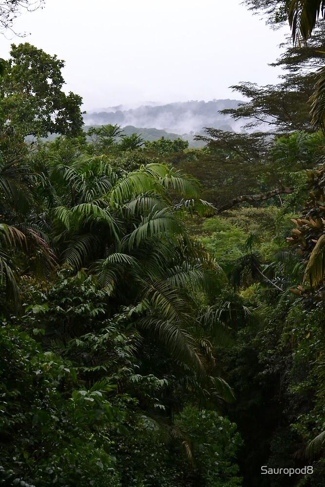 Panama Rainforest by Sauropod8