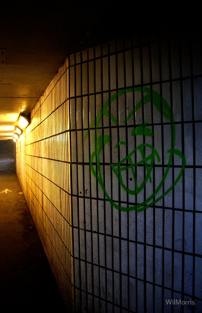Smiling Underpass by WilMorris