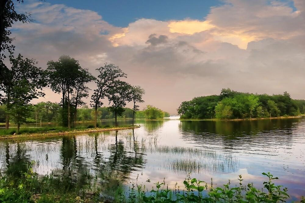 Morning on the Lake by sunshine65