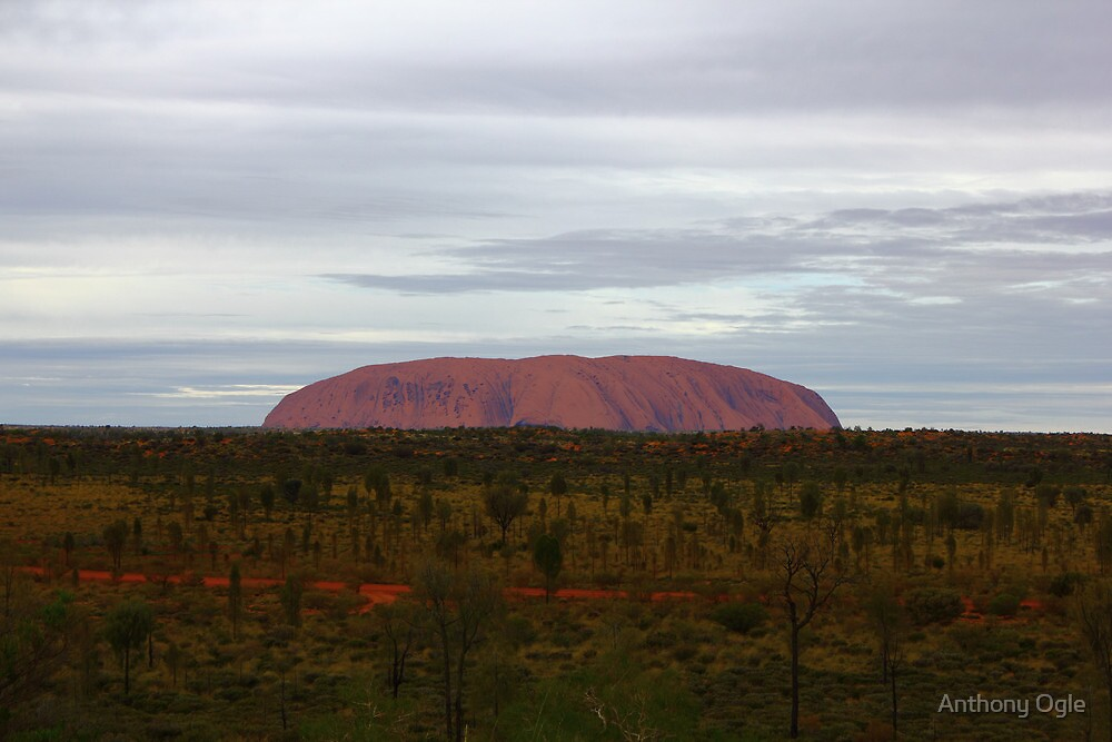 A little worn with time - Uluru by Anthony Ogle