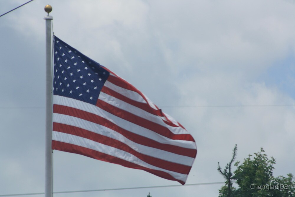American flag by Cherryladi02