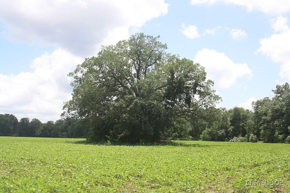 """Neat"" tree II by Cherryladi02"