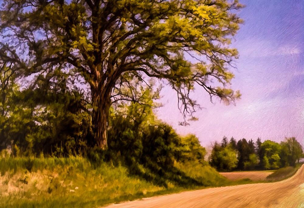 Roadside Oak by Wib Dawson