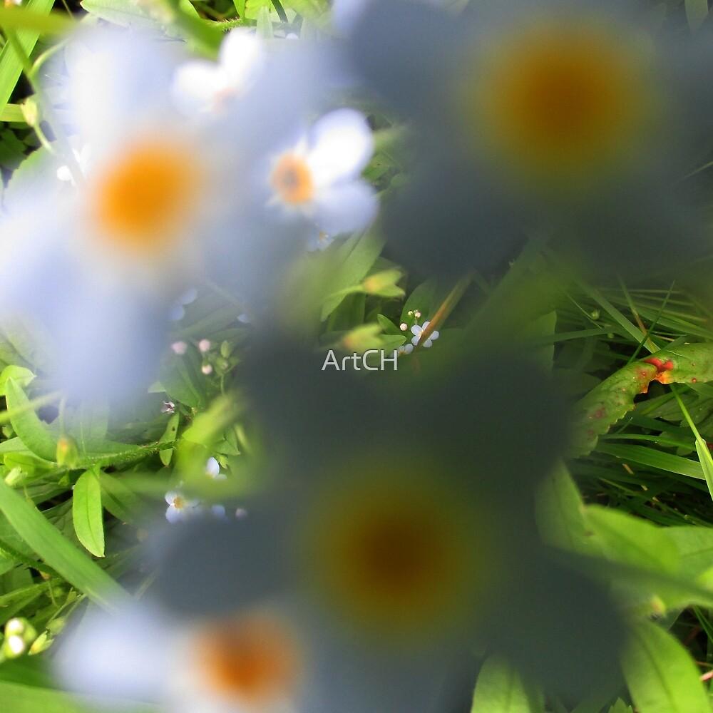 Flower by ArtCH