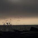 Storm Cloud Eclipse by jroch