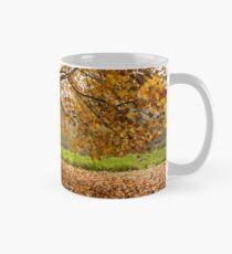 Come and seek comfort Mug