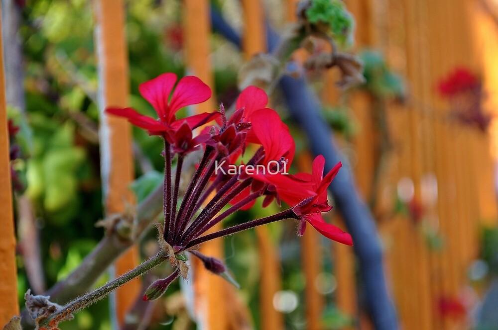 Blooming beautiful by Karen01