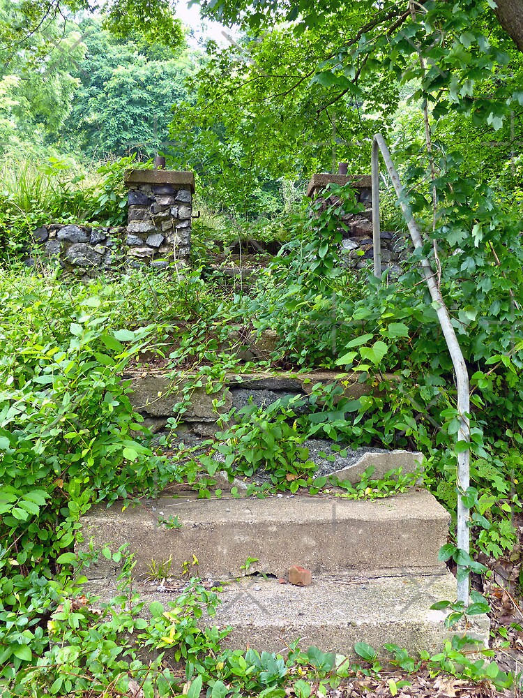 Overgrown by FrankieCat