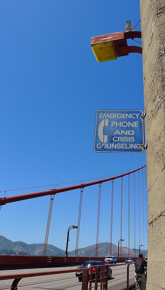 Suicide Bridge by Barbara Morrison