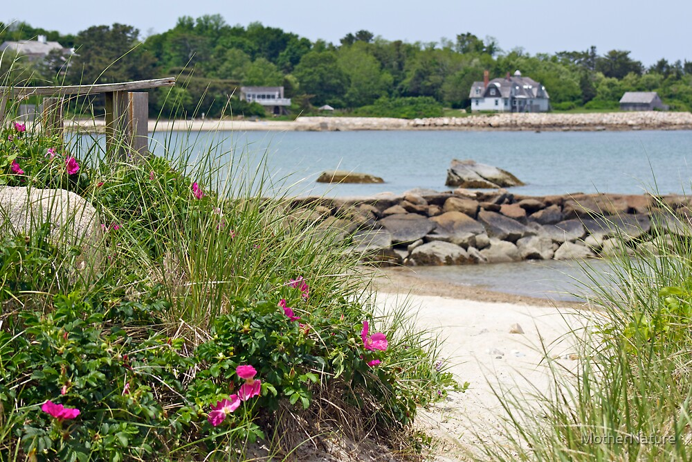 You're Sure To Fall In Love With Old Cape Cod by MotherNature