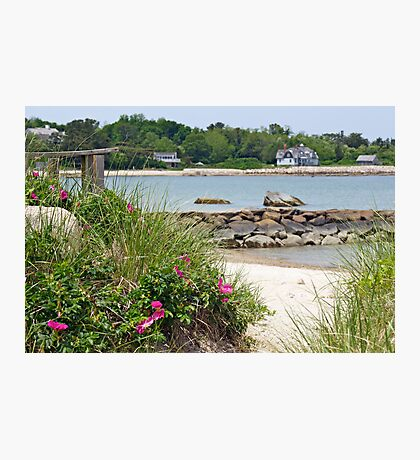 You're Sure To Fall In Love With Old Cape Cod Photographic Print