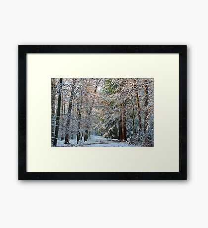 The path ahead Framed Print