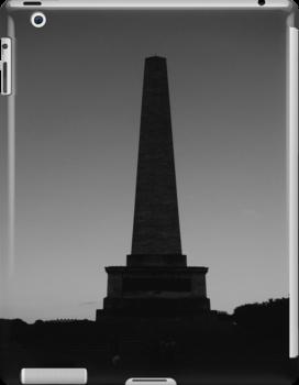WELLINGTON MONUMENT - PHOENIX PARK  by Colleen2012