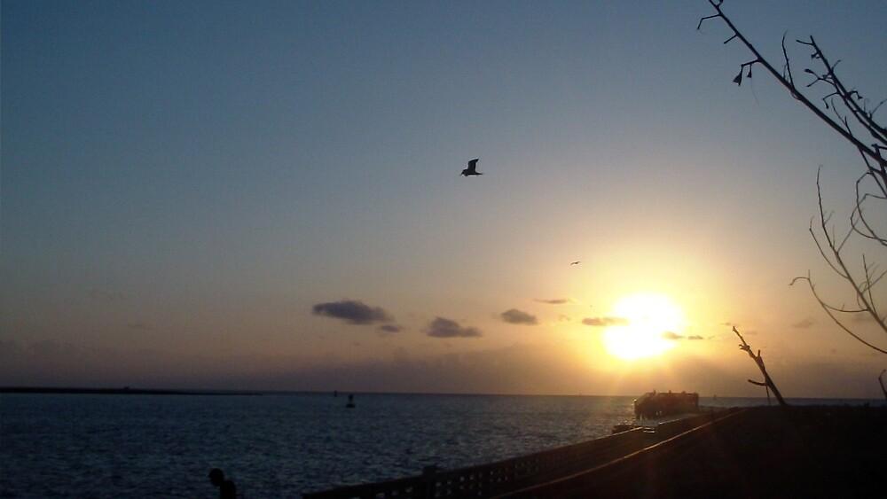 Sun Rise 2 by Trevor0208
