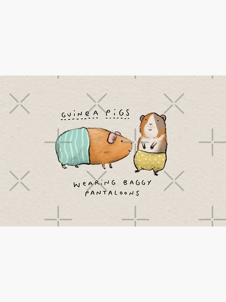 Guinea Pigs Wearing Baggy Pantaloons by SophieCorrigan