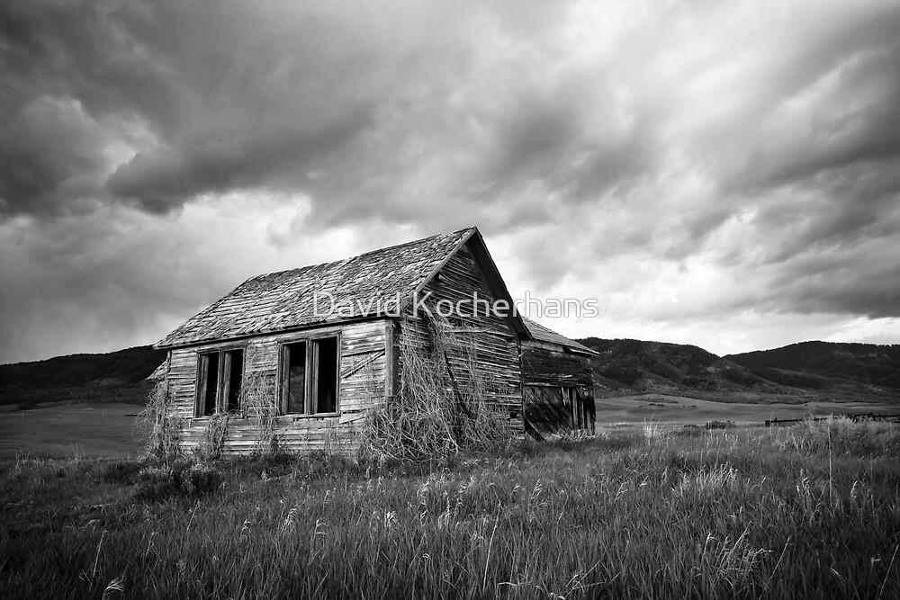 Abandoned Farmhouse by David Kocherhans
