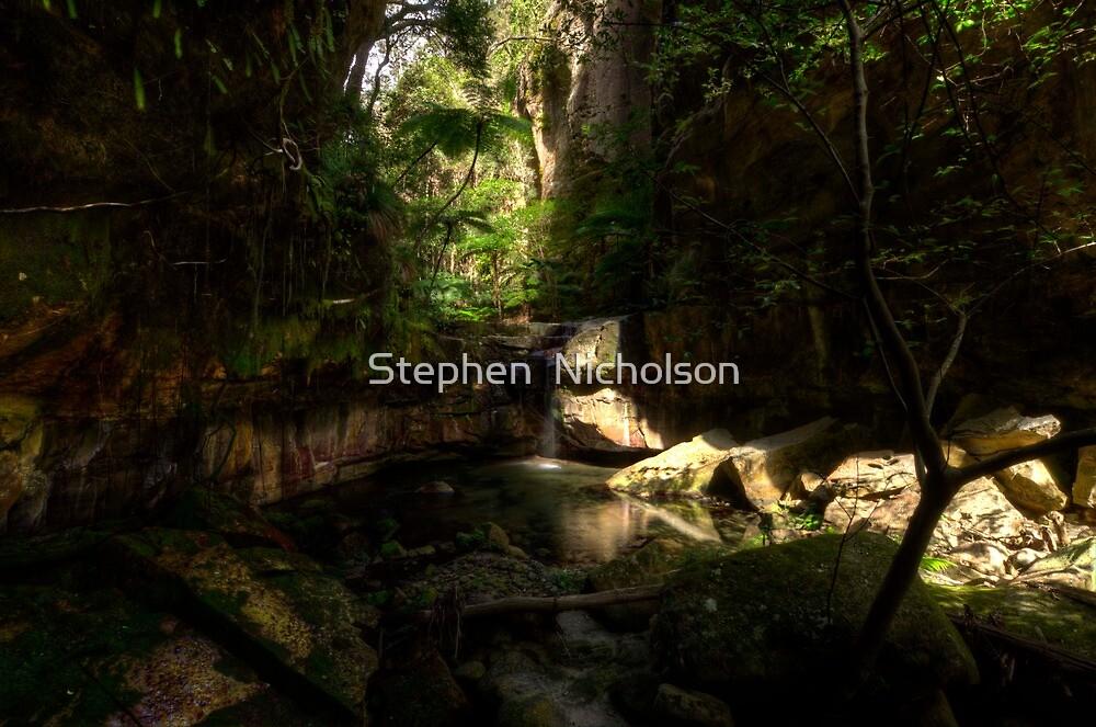 Moss Gardens Waterfall  by Stephen  Nicholson