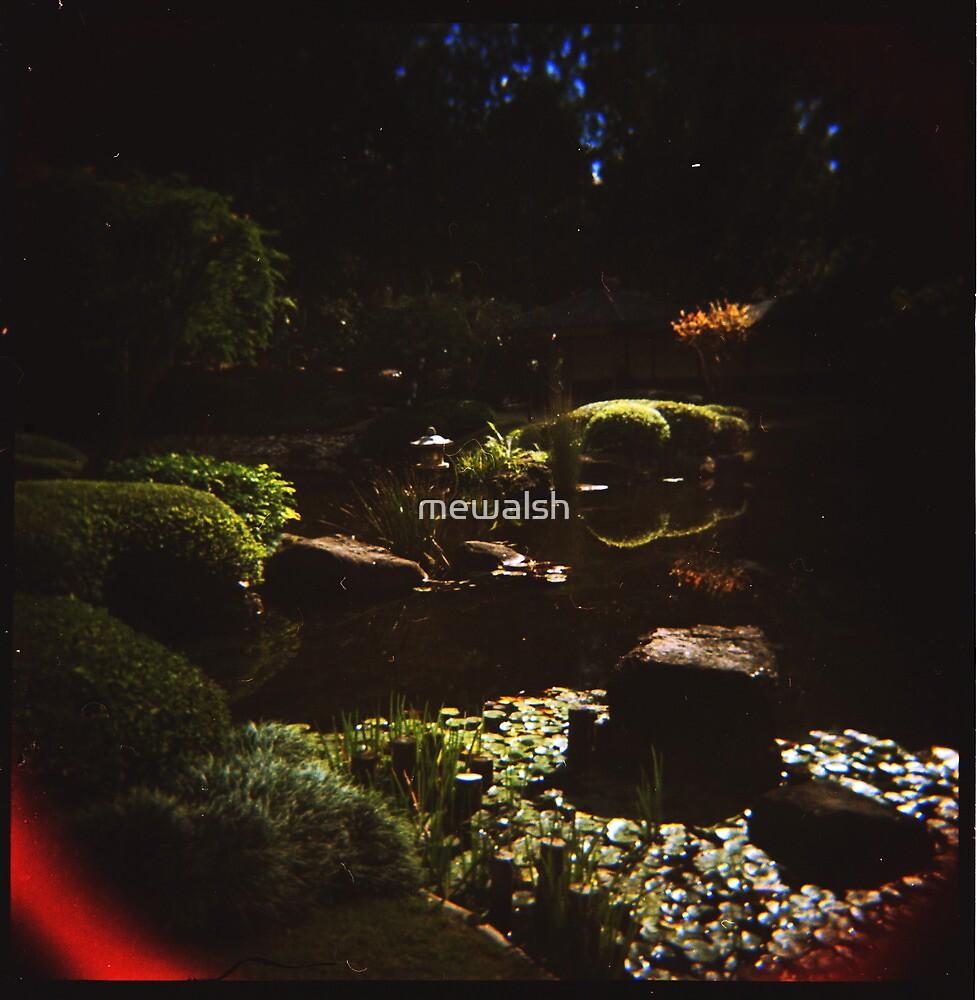Holga Botanic Garden #2 by mewalsh