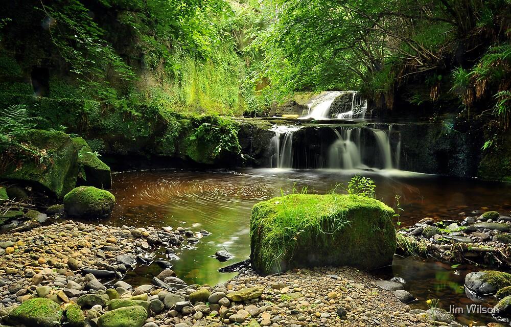 Garell Glen, Kilsyth, Scotland by Jim Wilson