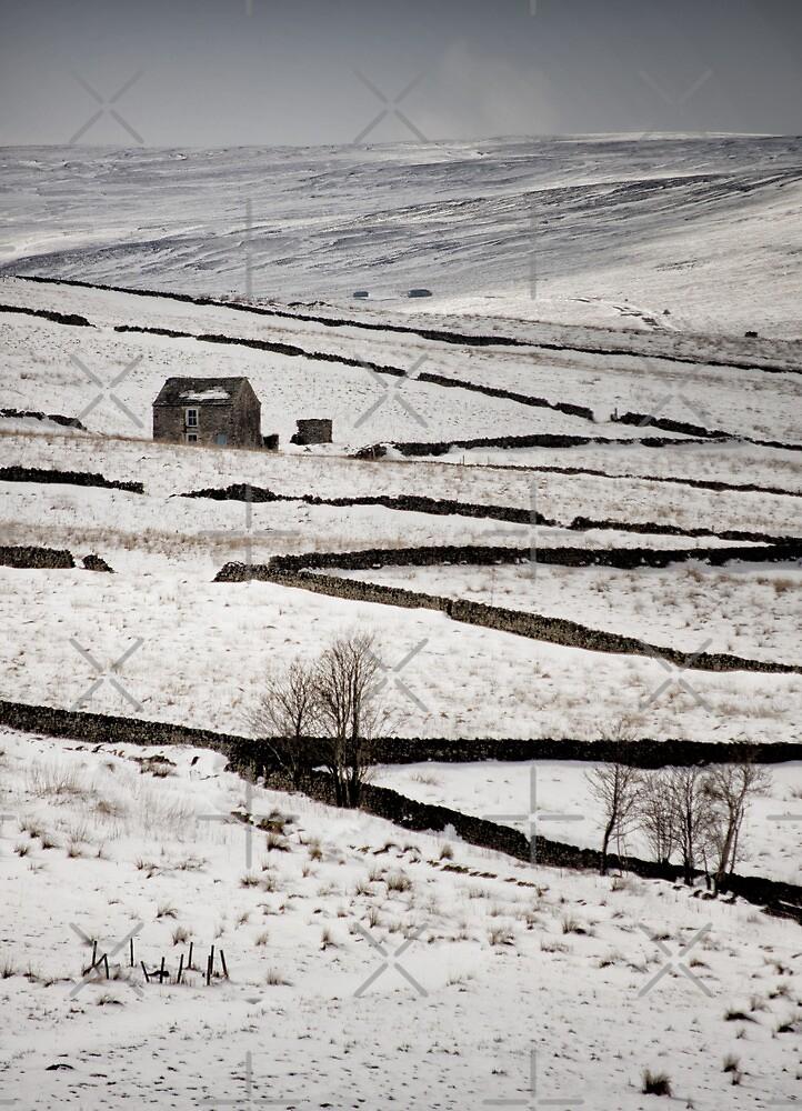 Weardale Snow by AJ Airey