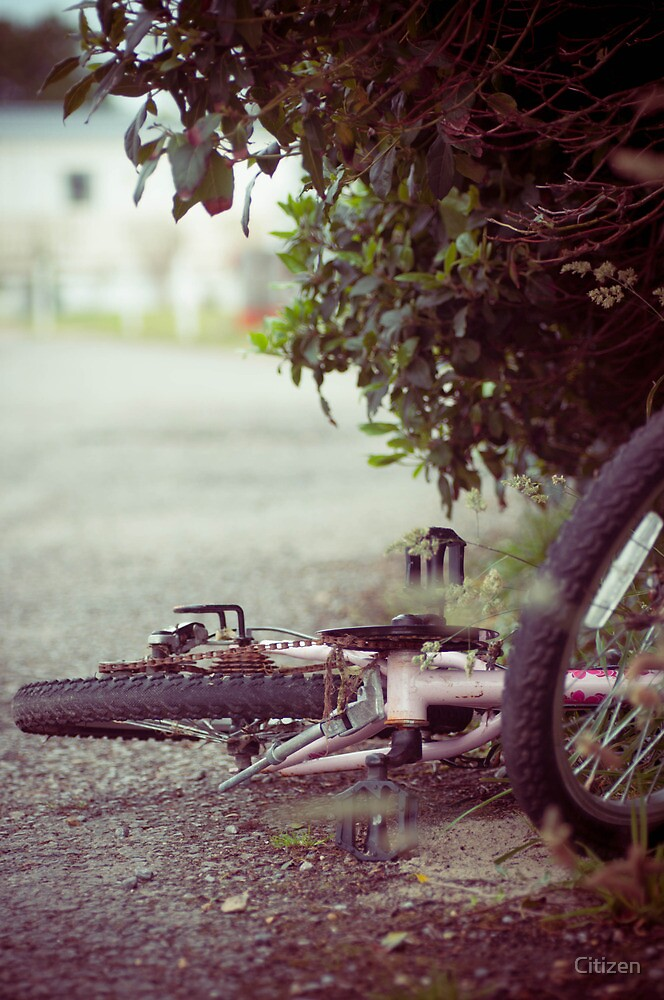 The Abandoned Bike by Nikki Smith