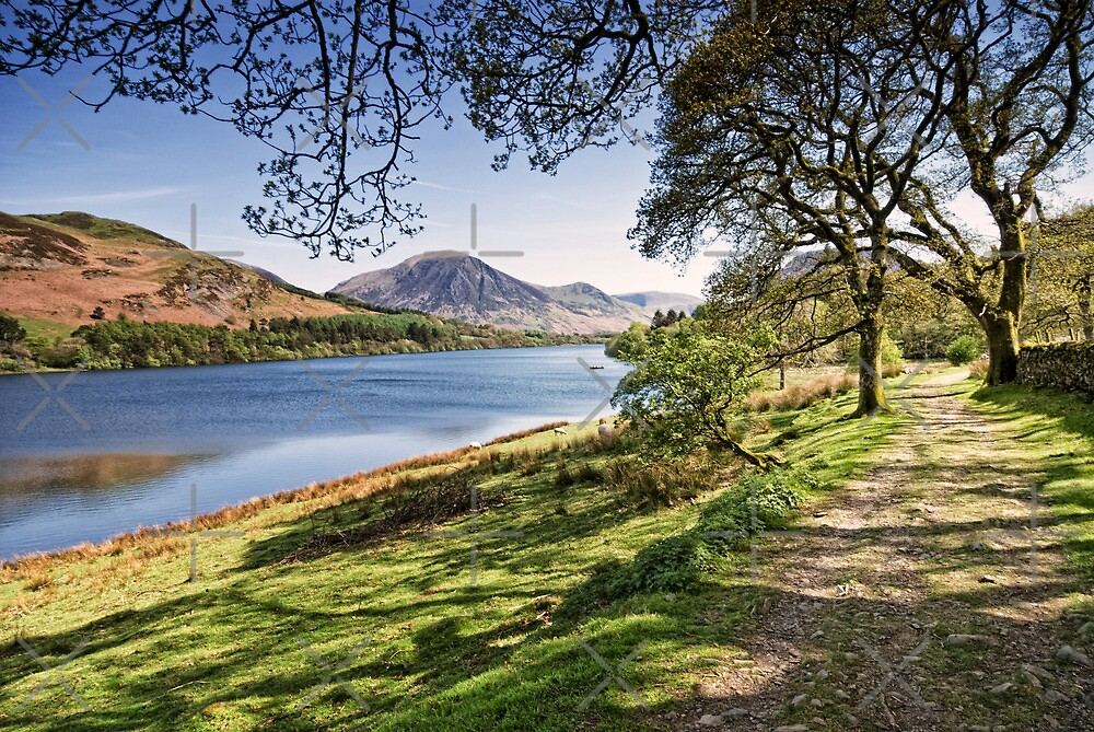 Loweswater Spring by AJ Airey