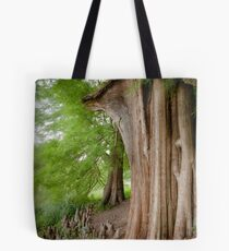 Under the swamp cypresses Tote Bag
