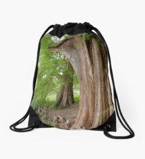 Under the swamp cypresses Drawstring Bag