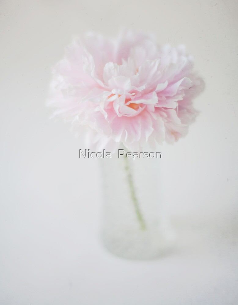 Textured Pink Peony by Nicola  Pearson
