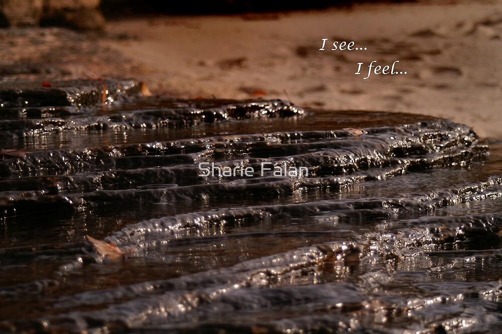 I see, I feel by Sharie Falan