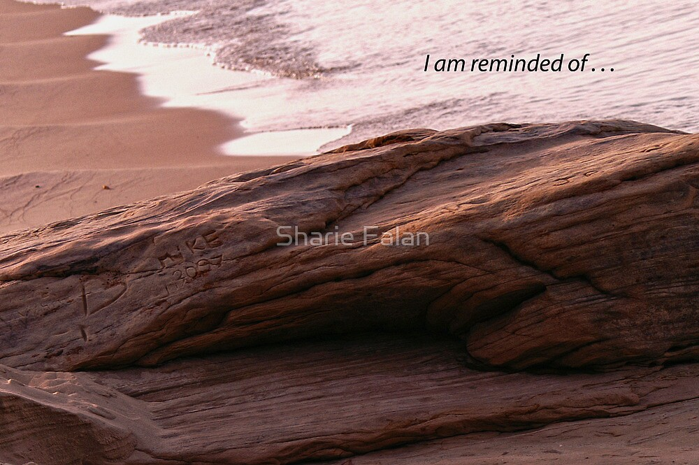 I am reminded of by Sharie Falan