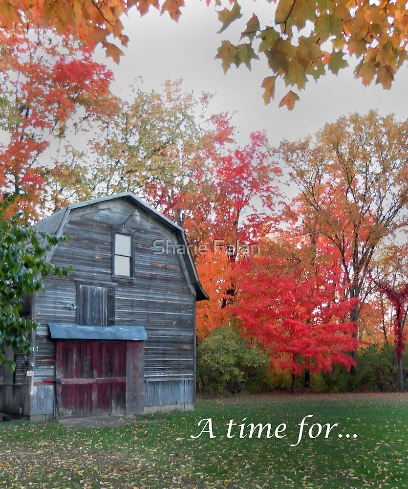 A time for.. by Sharie Falan