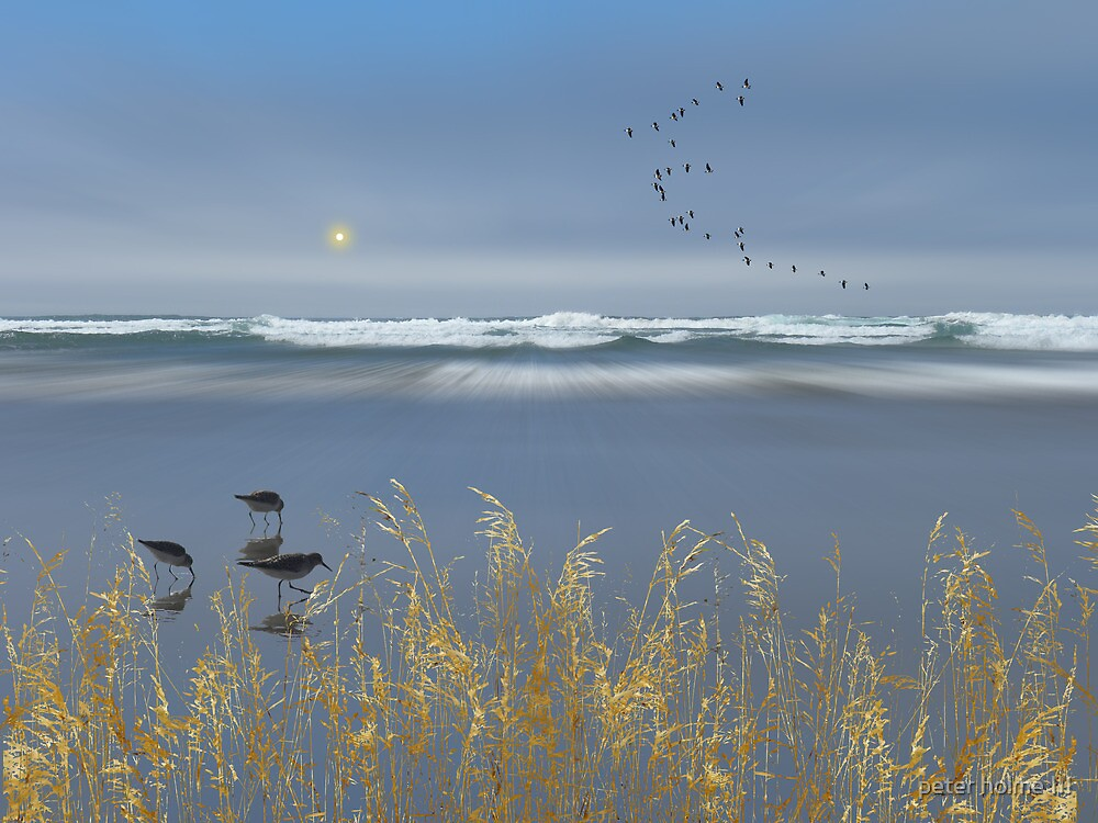2931 by peter holme III