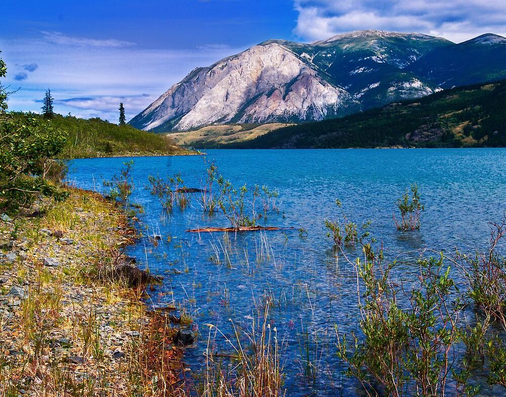 Tagish Lake - Windy Arm by Yukondick
