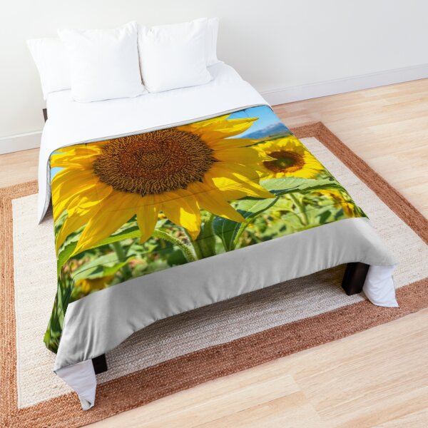 Sunflowers from the beautiful island of Mallorca Comforter