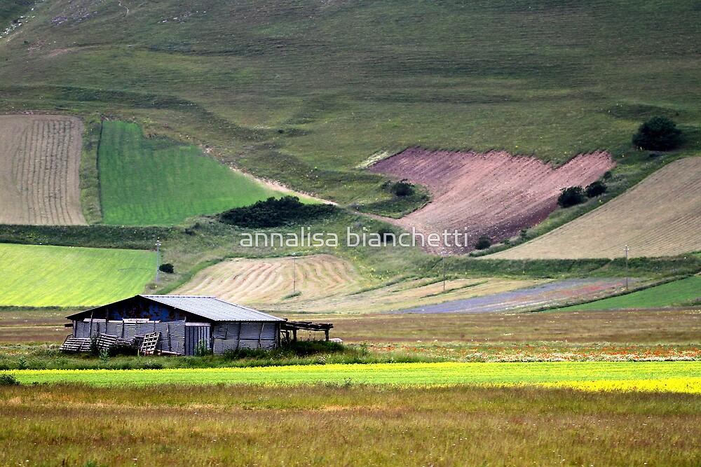 The barn on the plateau by annalisa bianchetti