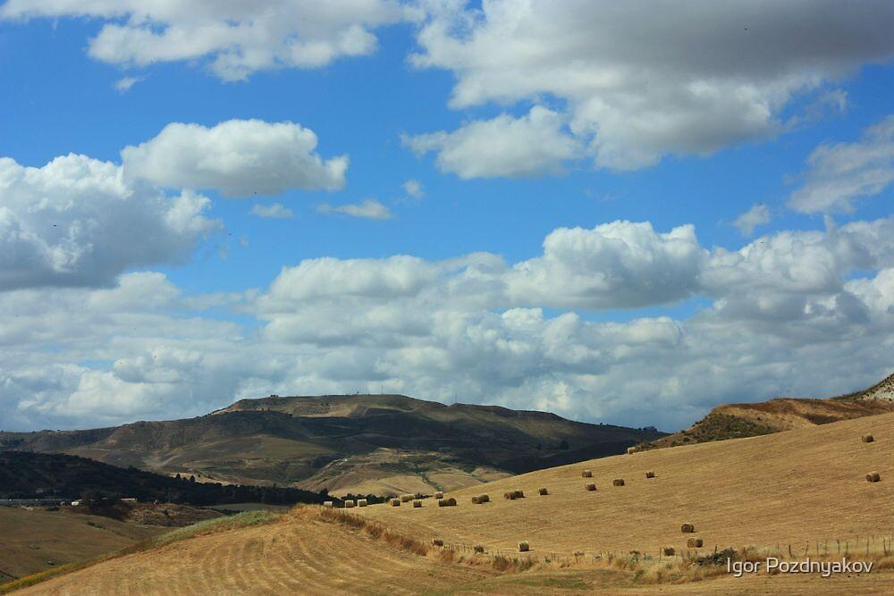 Rural Sicily. by Igor Pozdnyakov