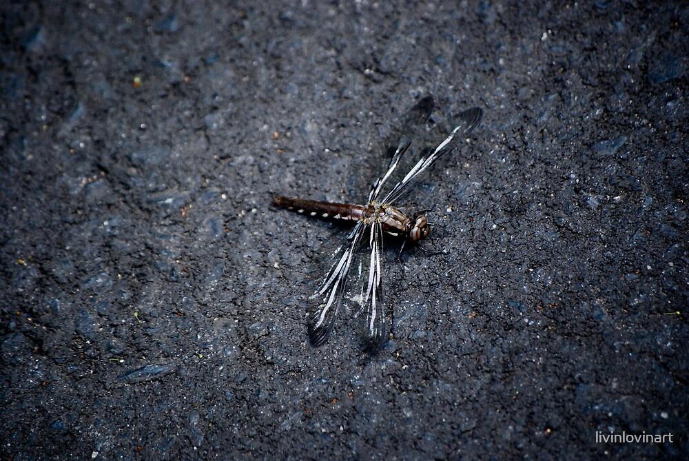 Dragonfly by livinlovinart