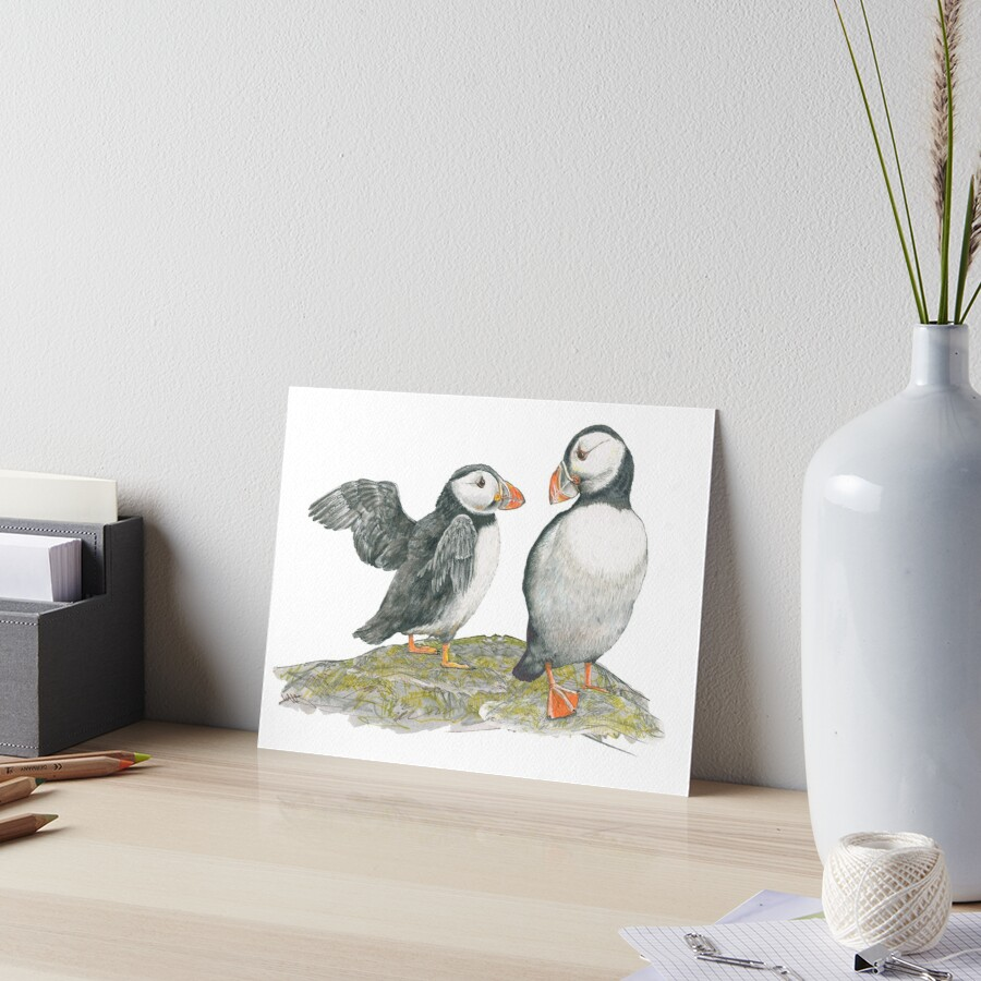 Puffins by Mary Fleeson Art Board Print
