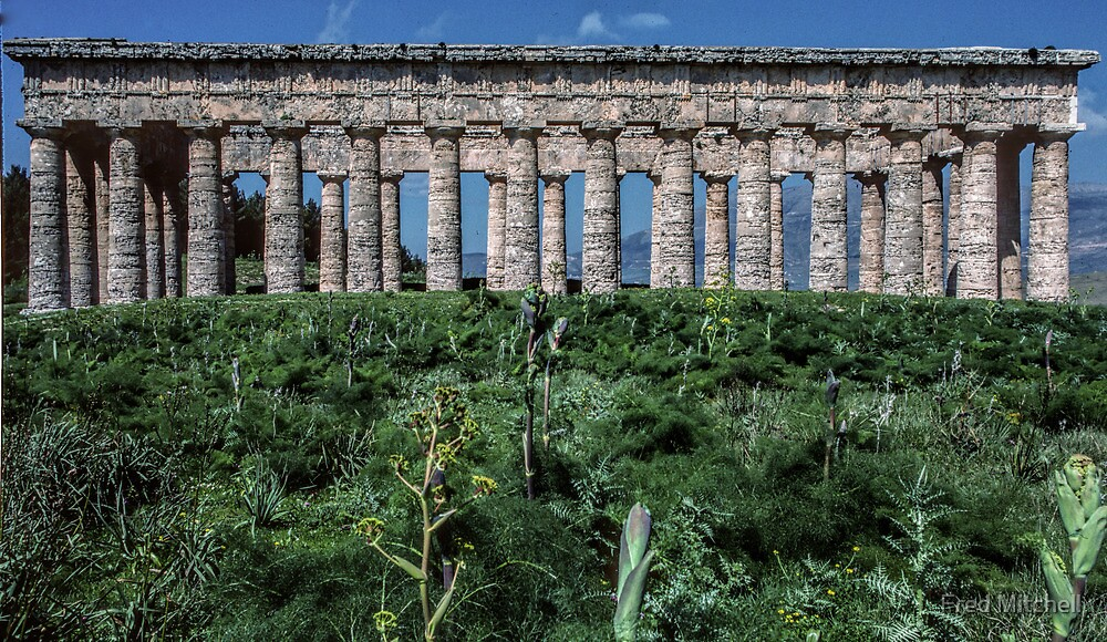 Side view Greek Temple Segesta Sicily 19840325 0043  by Fred Mitchell
