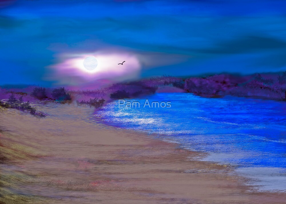 Moonlight Beach by Pam Amos