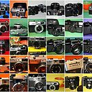 Camera Collage II by wayneyoungphoto